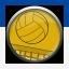 أقدم لكم ترجمة تروفيز Sports Champions 17