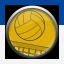 أقدم لكم ترجمة تروفيز Sports Champions 20